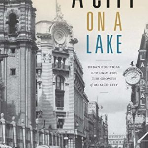 A City on a Lake: Urban Political Ecology and the Growth of Mexico City - eBook