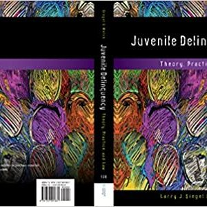 Juvenile Delinquency: Theory, Practice, and Law (13th Edition) - eBook