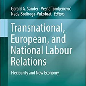 Transnational, European, and National Labour Relations: Flexicurity and New Economy - eBook