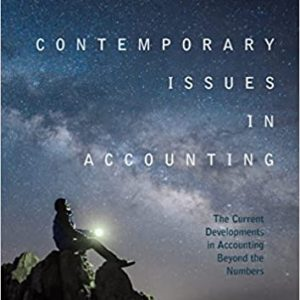 Contemporary Issues in Accounting: The Current Developments in Accounting Beyond the Numbers - eBook