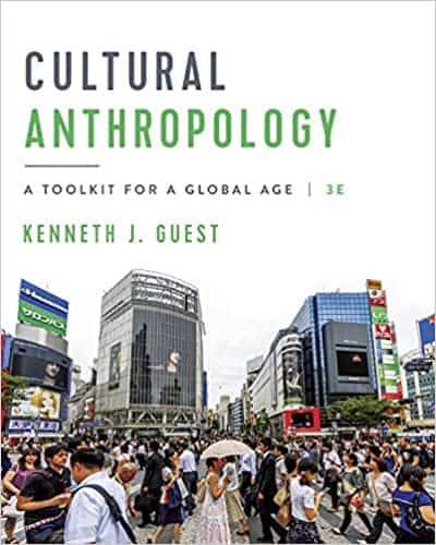 Cultural Anthropology: A Toolkit for a Global Age (3rd Edition) - eBook